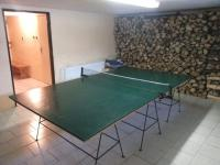 Cottage in the Bohemian forest - table tennis